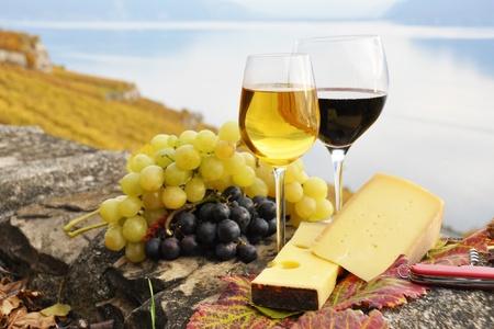 Zwei Weingläser, Käse und Weintrauben auf der Terrasse der Weinberg im Lavaux Region, Schweiz Lizenzfreie Bilder