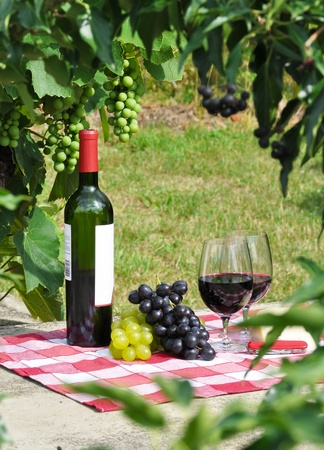 Red wine and grapes served at a picnic photo