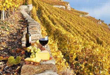 Wein, Trauben und Käse gegen Wein in Lavaux, Schweiz