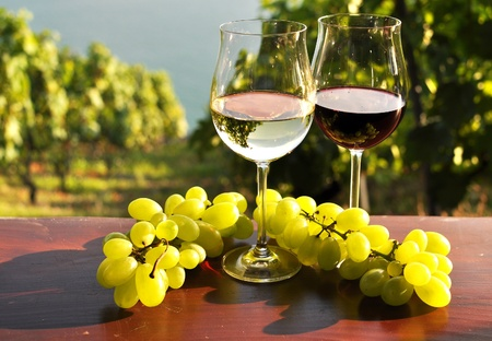 Pair of wineglasses and bunch of grapes. Lavaux region, Switzerland  스톡 콘텐츠