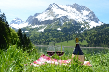 onion valley: Wine and vegetables served at a picnic in Alpine meadow  Switzerland