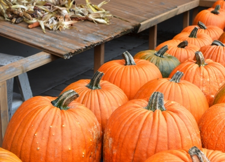 Pumpkins Stock Photo - 15787665