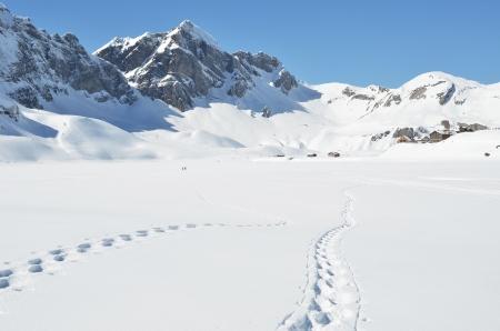 snowbank: Footsteps on the snow  Melchsee-Frutt, Switzerland