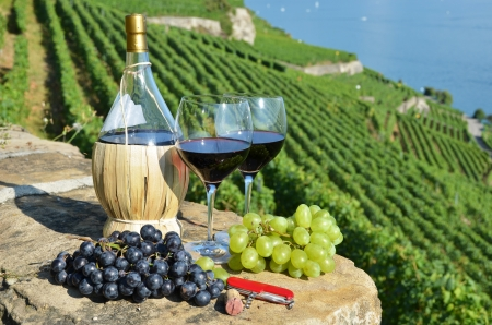 Wine on the terrace vineyard in Lavaux region, Switzerland  Stock Photo