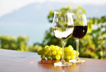 Wine and grapes Standard-Bild