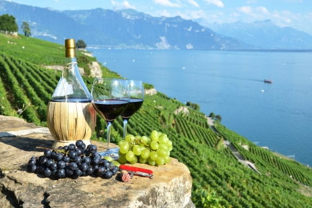 field glass: Red wine and grapes. Lavaux region, Switzerland