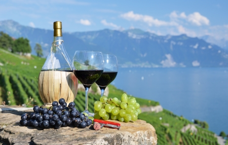 Red wine and grapes. Lavaux region, Switzerland  photo