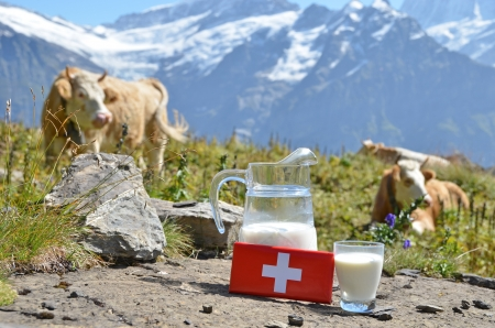 http://us.123rf.com/450wm/happyalex/happyalex1307/happyalex130700018/20689448-swiss-chocolate-and-jug-of-milk-on-the-alpine-meadow-switzerland.jpg