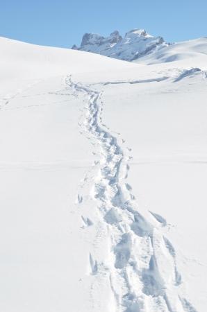 雪の上の足跡。メルヒゼー フルット、スイス
