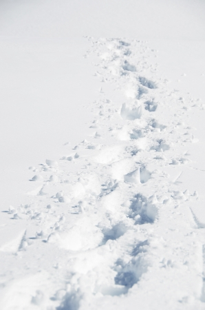 snowdrift: Footsteps on the snow. Melchsee-Frutt, Switzerland Stock Photo