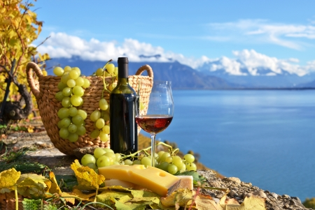 swiss culture: Red wine and grapes on the terrace of vineyard in Lavaux region, Switzerland Stock Photo