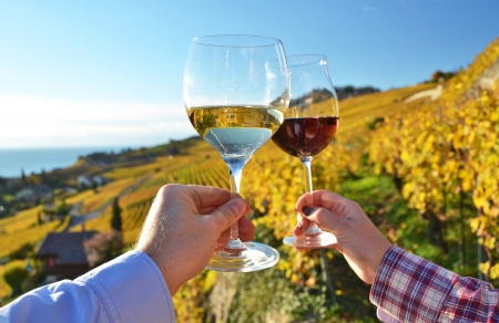 Two hands holding wineglases against vineyards in Lavaux region, Switzerland Stock Photo - 24477466