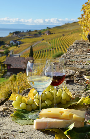 Two wineglasses, cheese and grapes on the terrace of vineyard in Lavaux region, Switzerland  photo