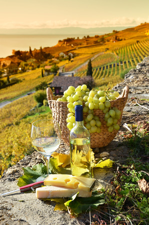 Wineglass and basket of grapes. Lavaux region, Switzerland photo