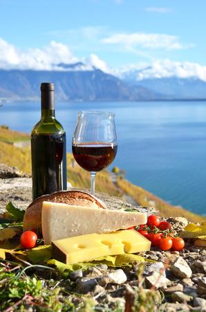 chese: Wine and chese. Lavaux region, Switzerland