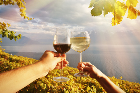 champagne glass: Two hands holding wineglases against vineyards in Lavaux region, Switzerland Stock Photo