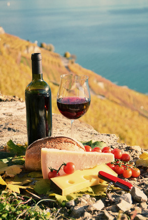 Wine and cheese in Lavaux region, Switzerland  photo
