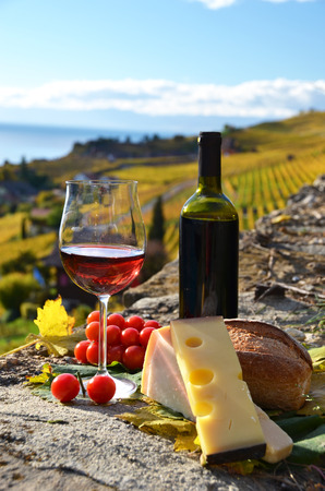 Wine and cheese. Lavaux region, Switzerland photo