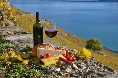 chees: Red wine, chees, bread and cherry tomatos. Lavaux, Switzerland Stock Photo