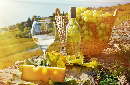 still life of wine: Wine and grapes. Lavaux region, Switzerland