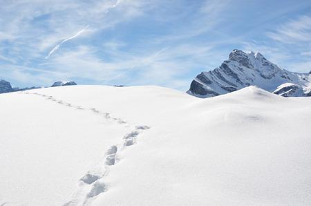 huellas pies: Huellas en la nieve. Foto de archivo