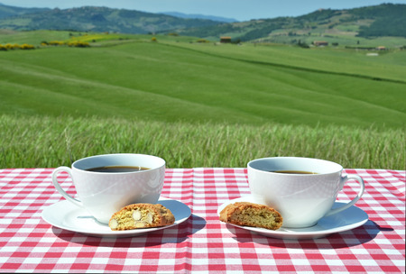 tela blanca: Coffee and cantuccini on the chequered cloth against Tuscan landscape. Italy