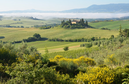 tuscan: Typical Tuscan landscape. Italy