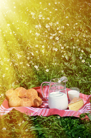 jag: Milk, cheese and bread served at a picnic on Alpine meadow, Switzerland