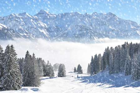 frost covered: Braunwald, Switzerland Stock Photo