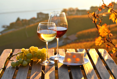 wineries: Wine against vineyards in Lavaux, Switzerland Stock Photo