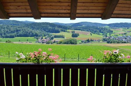 roof windows: Swiss panorama from a balcony