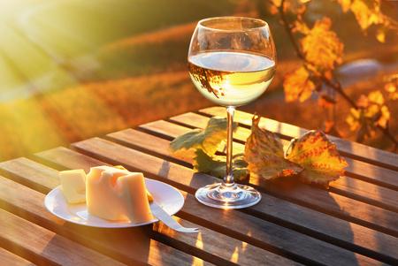 grapes wine: Wine and grapes against Geneva lake, Switzerland