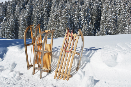 firry: Sledges against snowy Alps Stock Photo