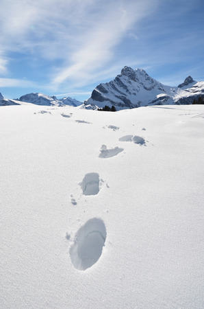 dint: Footprints in the snow. Stock Photo