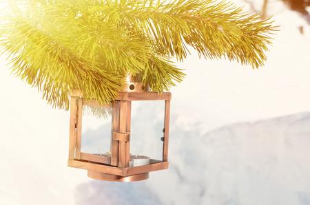 Lantern on the spruce branch
