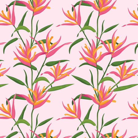 bird of paradise: Seamless pattern with Pink Bird of Paradise flower