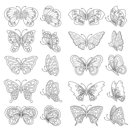 butterfly isolated: Set of butterflies - black and white