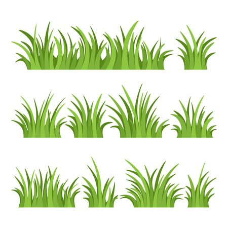 Set of green grass isolated on white background. Vector illustration. Vettoriali