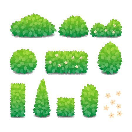 Collection of green bushes with flowers isolated on white background. Vector Illustration.