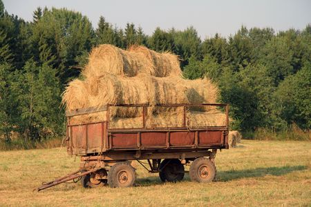 Rolled-up straw in the cart. photo