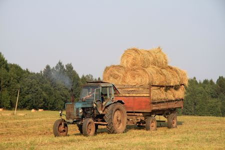 Old tractor transporting hay. photo