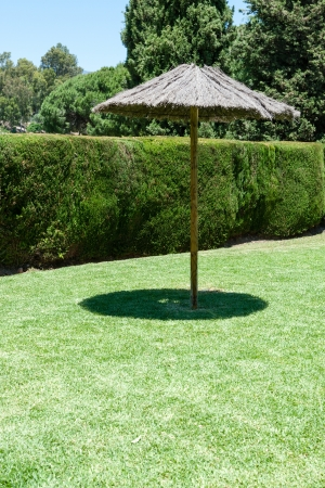 Lone old thatched shade umbrella on a green lawn with a carefully trimmed green hedge to ensure privacy for anyone wishing to sit under it