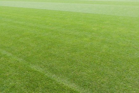 Abstract background of an expanse of empty green turf in a sports stadium or field Stock Photo