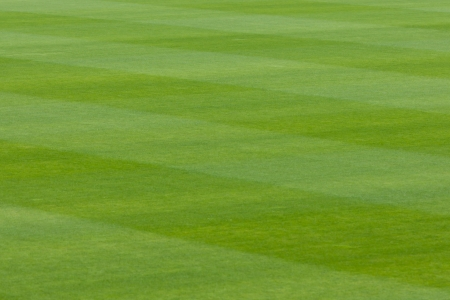 Neatly trimmed lush green grass or turf in a stadium or sports field with a striped effect from the passage of the mower