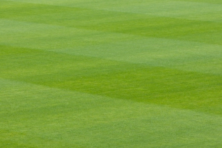 Abstract background of lush green grass closely mown for playing sport showing a paralel stripe effect from the blades of the mower Stock Photo