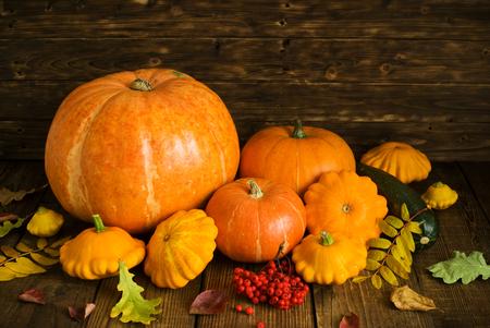 groupe of orange pumpkins and squash on dark wooden background