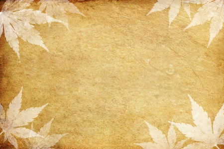 old grunge paper and leaf with copy space  photo