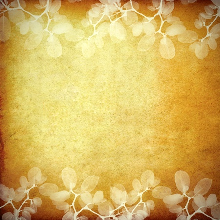 vintage flora frame with space Stock Photo - 9487609