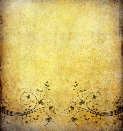 old grunge paper background with vintage flower and space photo