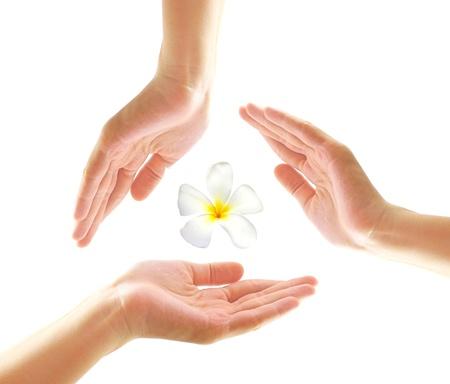 pepsico: Female hands with frangipani in spa concept